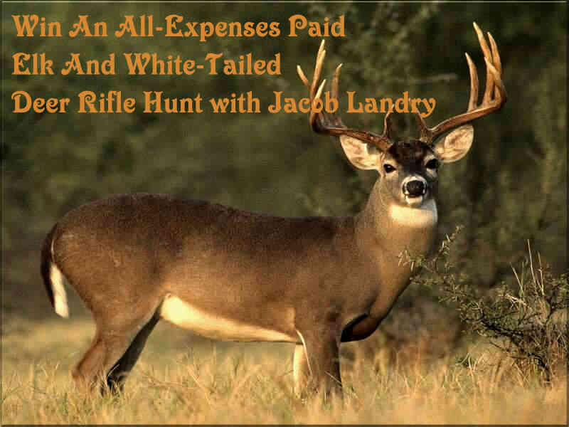 www.buckmasters.com Win An All-Expenses Paid Elk And White-Tailed Deer Rifle Hunt With Jacob Landry In Buckmasters Giveaways