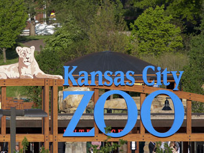 www.kansascityzooexperience.com Get A Validation Code From Kansas City Zoo Through Its Visitor Satisfaction Survey To Enjoy An Offer