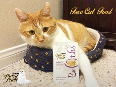 Claim A Free Sample Of Fancy Feast Broths Cat Food For Your Beloved Cats