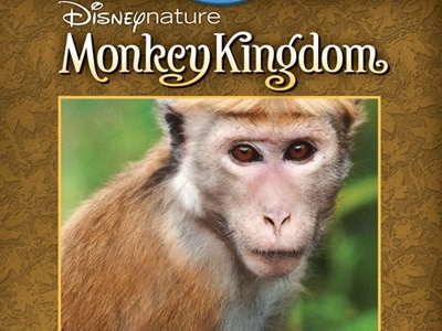 www.kidzworld.com/contests - Enter Kidzworld's Disneynature's Monkey Kingdom Blu-Ray Contest To Win One Copy Of Disneynature Monkey Kingdom On Blu-ray